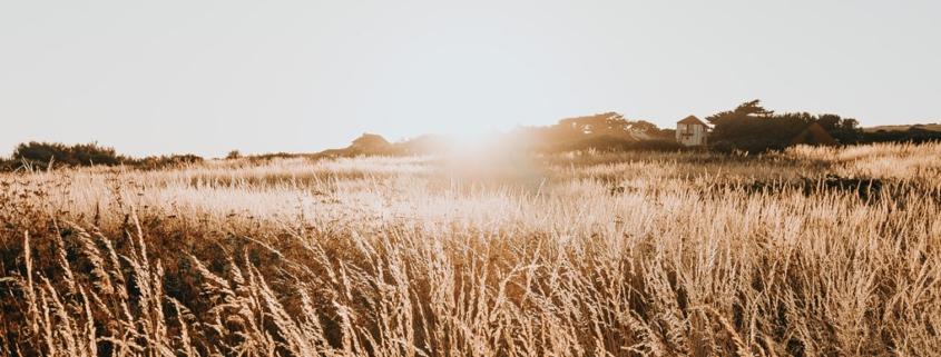 3 consejos mas para fotografiar paisajes